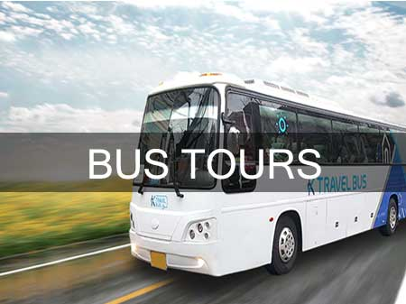 Taxi in Tirupati Bus Tours Service